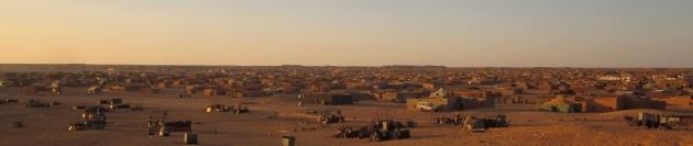 280414 Tur til Tindouf-lejrene (610)