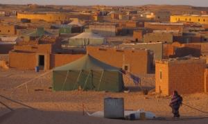 280414 Tur til Tindouf-lejrene (605)AK