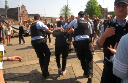 Danish police arrest activist